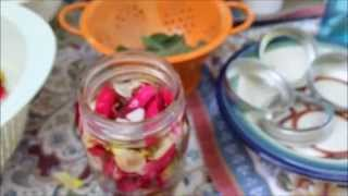 How to make an Organic Vegetable Glycerin Tincture