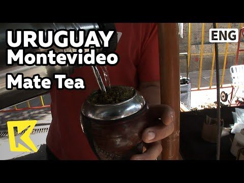 【K】Uruguay Travel-Montevideo[우루과이 여행-몬테비데오]국민음료수, 마테차/Mate Tea/Drink/Old Town/Straw/Cup
