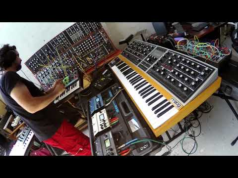 Moog One, Grandmother, System 55 and Digitakt - First tune