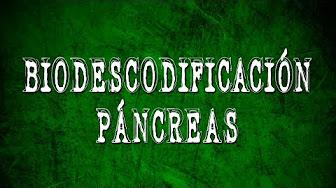 Biodescodificacion pacreatica - YouTube