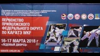 Первенство ПФО по каратэ г. Набережные челны 16-17 марта 2018 года.