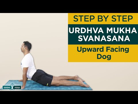 Urdhva Mukha Svanasana (Upward Facing Dog Pose) Benefits by Yogi Sandeep Siddhi Yoga