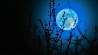 Next blue moon on