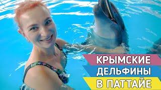 Новый дельфинарий в Таиланде. Экскурсии в Паттайе.