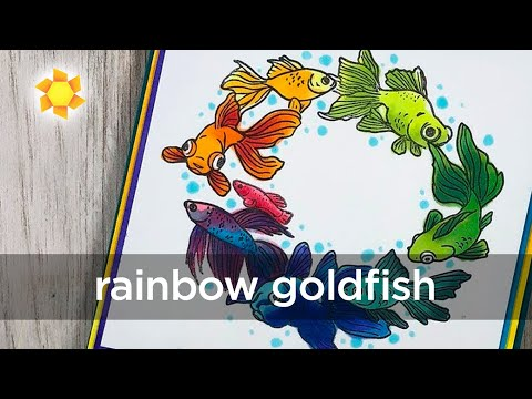 Rainbow Goldfish