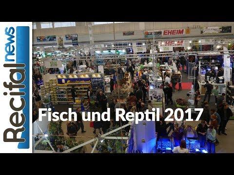 Fisch und Reptil 2017 : visite du salon aquariophile et terrariophile