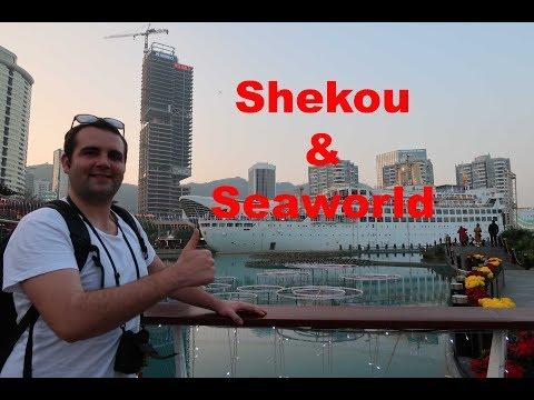What to do in Shenzhen? Shekou and Seaworld