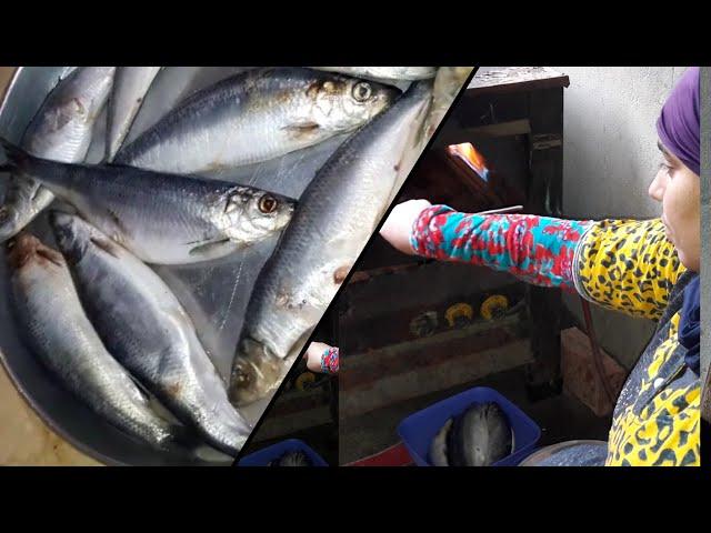 سمك الرنجه المشوى فى الفرن وطرقتى البسيطه فى شويو 😎
