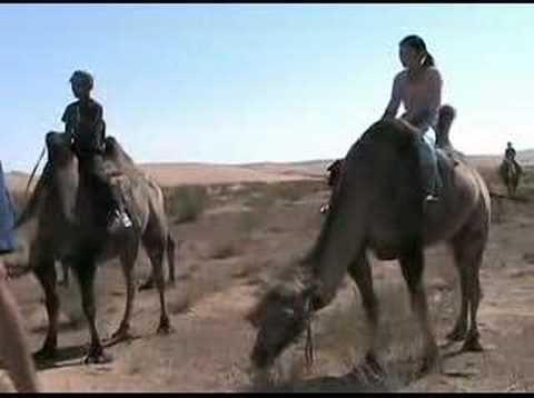 Mongolie, désert de Gobi (MG-3) Mongolia Монгол улс