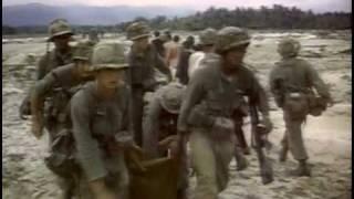 Der Krieg in Vietnam -Unsterbliches Tagebuch
