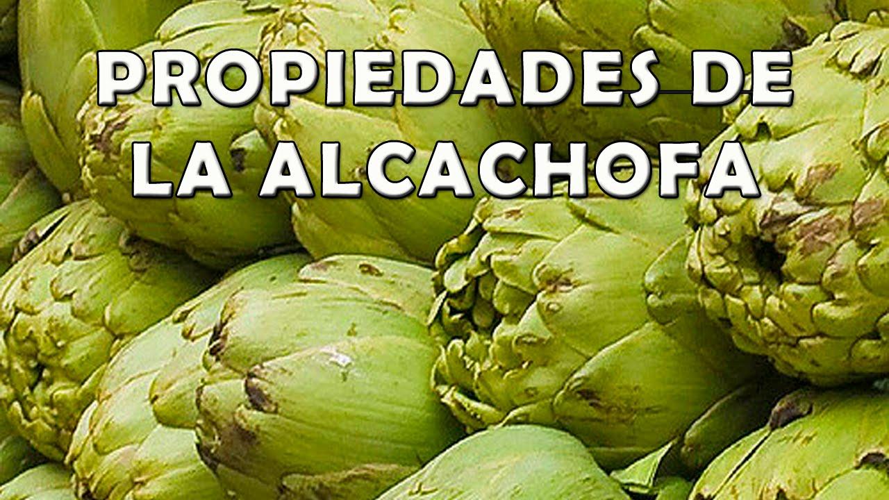 para q sirve la alcachofa y el boldo