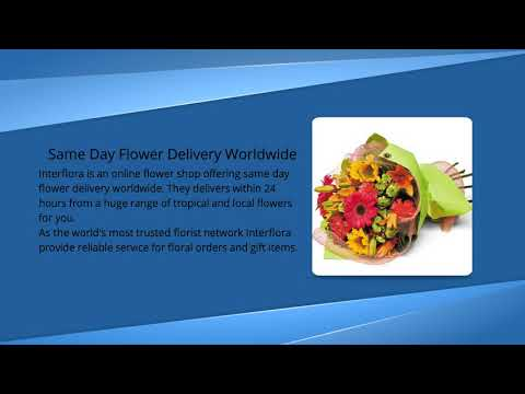 Flower Shop for Same Day Delivery Worldwide