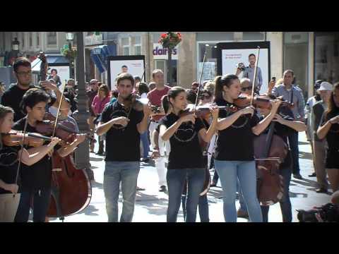 Flashmob Concentración Músicos de Cuerda