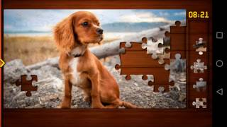 Jigsaw Puzzle Solving Puppy Dogs Puzzle Android App Gameplay Video
