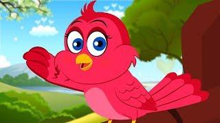 Chidiya Rani Badi Sayani | चिड़िया रानी बड़ी सयानी | Kids Rhymes | Cartoon Videos for Children