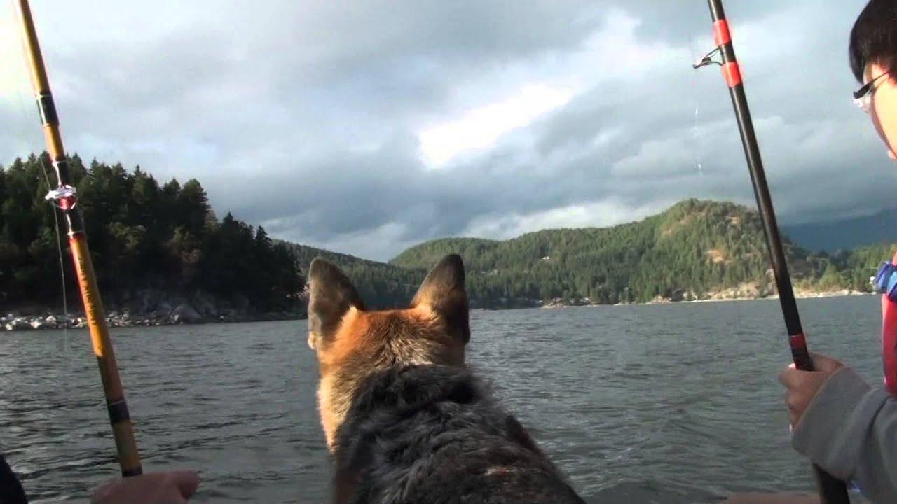 一家人出海釣魚磨爛席 - YouTube