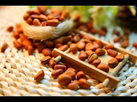 Тыквенное масло: свойства, состав и применение. Купить