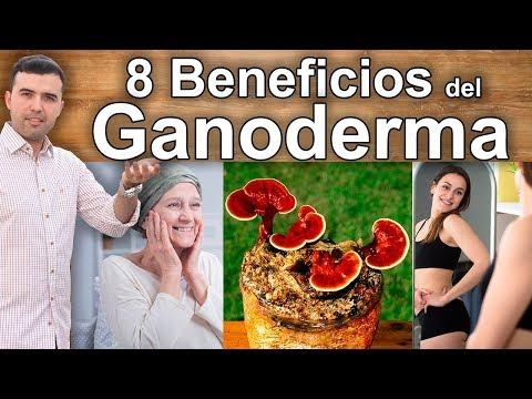 Para que Sirve el Ganoderma Lucidum - 8 Propiedades, Beneficios y Usos Medicinales