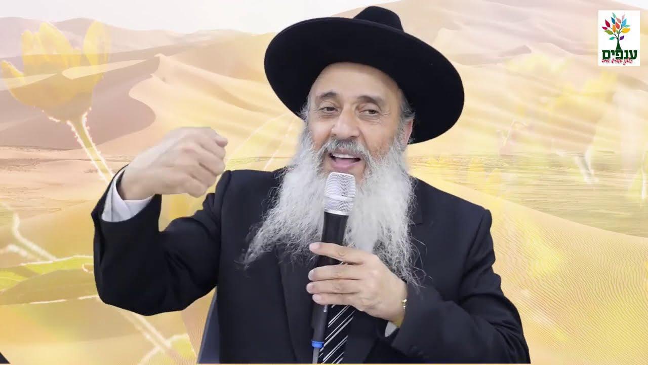 הרב אברהם ברוך בהרצאה חדשה ומחזקת ביותר שנמסר לפני חג שבועות עם מסרים כלליים שמתאימים לכל השנה מומלץ