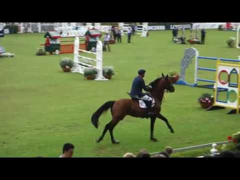 Dublin Horse Show 2016 - Irish Grand Prix