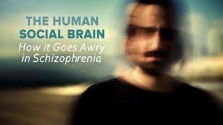The Human Social Brain: How It Goes Awry in Schizophrenia