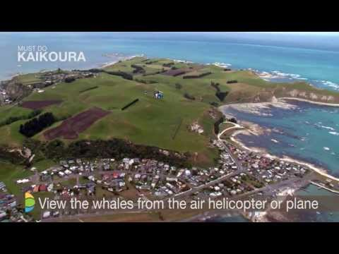 Things to do in Kaikoura - Must Do New Zealand