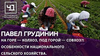 На горе — колхоз, под горой — совхоз?! Особенности национального сельского хозяйства.