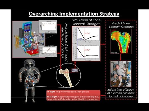 Ten Simple Rules of Credible Practice: Application to Bone Remodeling and Heart Valve Modeling