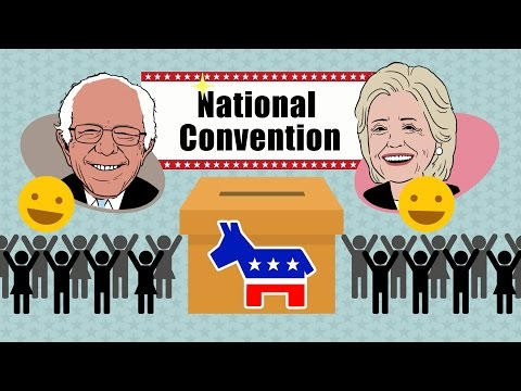 How do U.S. primaries and caucuses work? - TomoNews