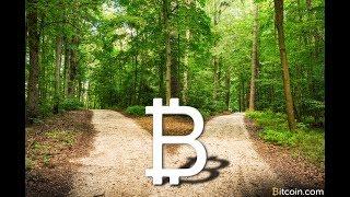 bitcoin cash как получить форк биткоин? btc bitcoin 2017