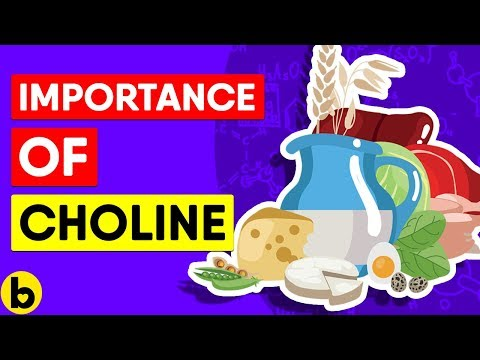 What Choline Is And Why You Need It