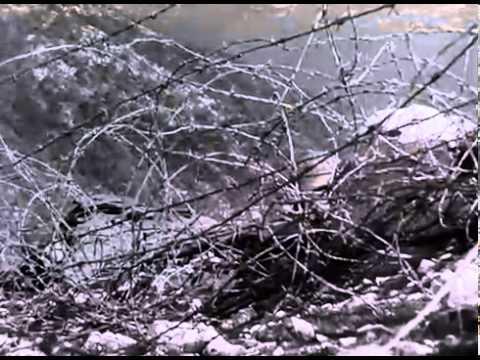 The Battle of San Pietro_ John Huston WW2 Documentary (1945 Movie)