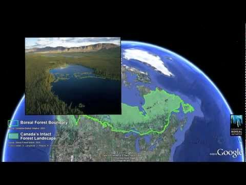 Maps for Good, with Google Earth Outreach