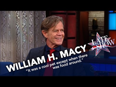 William H. Macy's Only Scar Comes From A Raccoon Bite