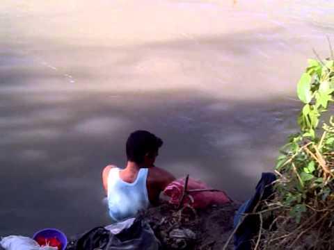 pesca guanare