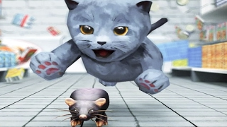 My Cute Little Kitty | 3D Cat Simulator Little Kitten Pet Care Gameplay Video