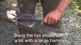 Henry The Horse Gets New Shoes From The Blacksmith