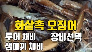화살촉오징어 100마리 잡았던 채비  오징어 낚시가기전…