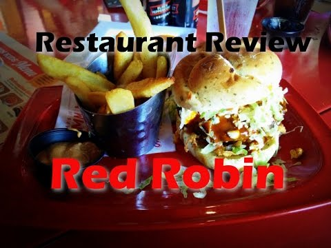 red robin review essay Robin - official teaser hitop films loading  robin (jason todd),  top 10 red hood shocking facts.