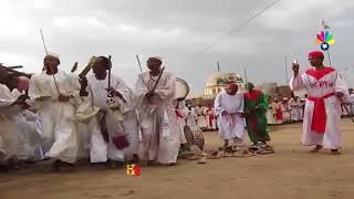 أولاد الشيخ الجعلي ــ للخضراء عظيم الشأن * ناوي القومة يا خلاني