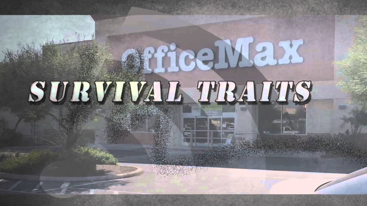 Building a giac index survival traits youtube building a giac index survival traits 1betcityfo Images