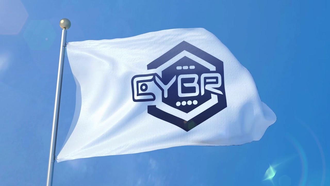 Hasil gambar untuk CYBR Token