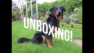 YupCollars Service Dog Harness Unboxing!!!