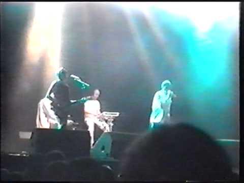 Fad Gadget live @ Eurorock festival 2001 (excerpt1)