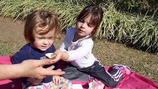 ABRINDO SURPRESAS MIRACULOUS LADYBUG BARBIE FROZEN PEPPA PIG MOANA E SHOPIKINS NO PARQUE