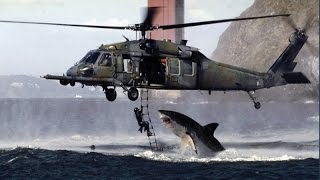 Real or Fake? Shark Attacks Helicopter