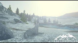 Accès précoce à Yellowstone! - Roblox