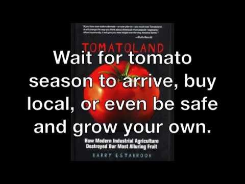 Tomatoland response about industrial agriculture