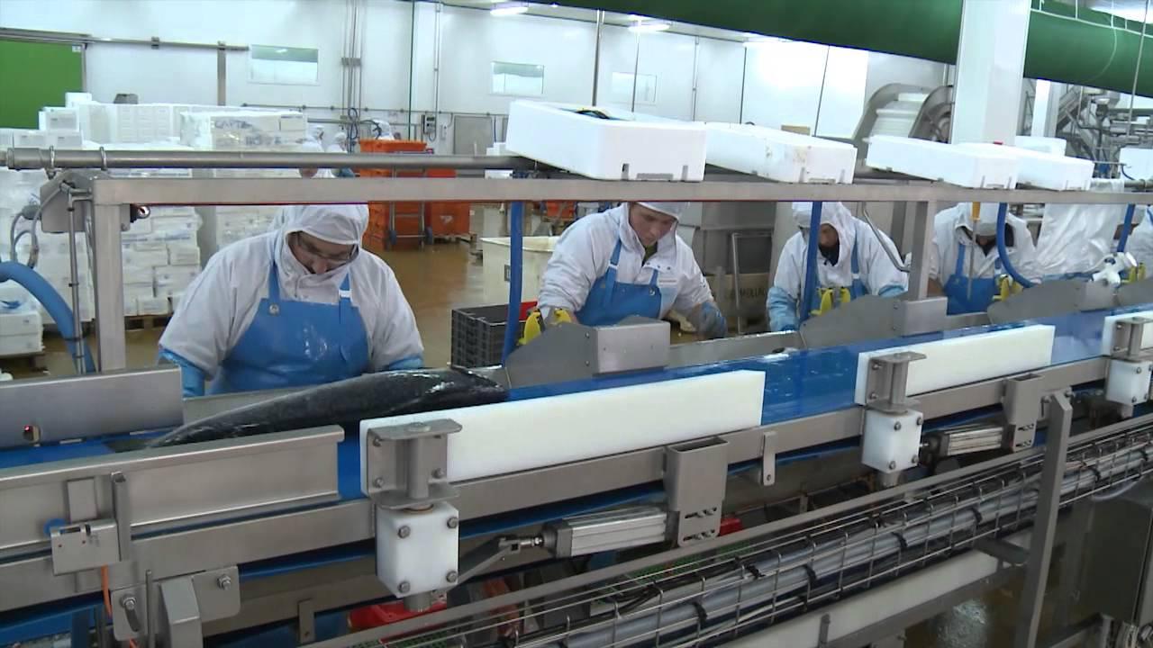 job in boulogne    metier agent de production agroalimentaire    boulogne-sur-mer