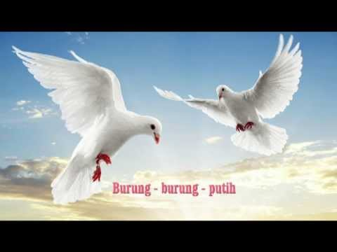 Burung burung Putih mp4